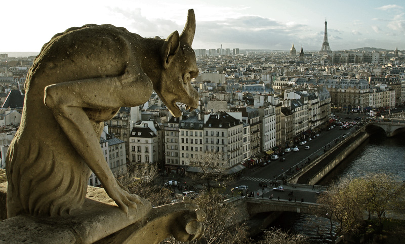 Notre Dame - El porqué
